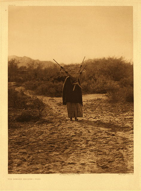 portfolio 2 plate no. 43 Burden-bearer - Pima