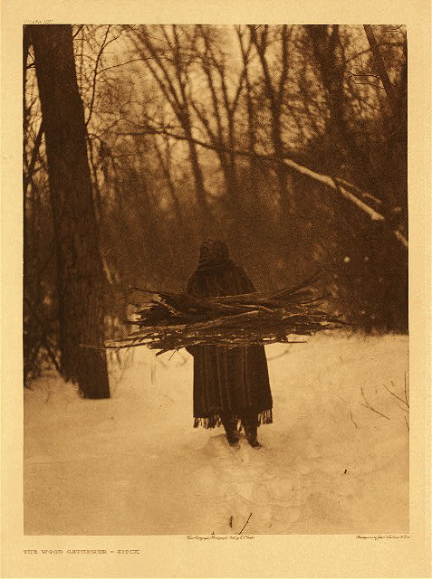portfolio 3 plate no. 105 Wood gatherer - Sioux