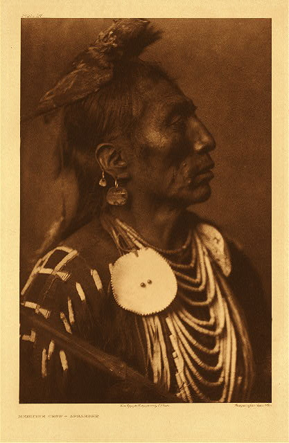 portfolio 4 plate no. 117 Medicine Crow - Apsaroke