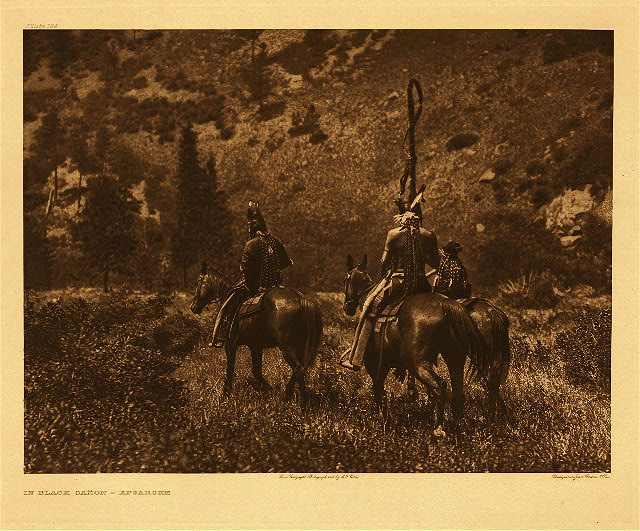 portfolio 4 plate no. 136 In Black Ca&ntilde;on - Apsaroke