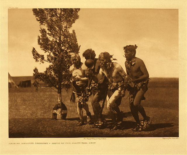 portfolio 5 plate no. 162 Arikara medicine ceremony - Dance of the black-tail deer
