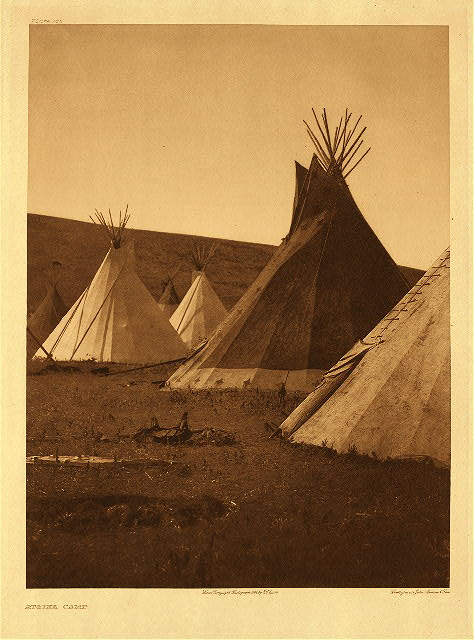 portfolio 5 plate no. 175 Atsina camp