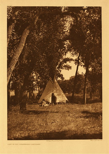 portfolio 6 plate no. 217 Camp in the cottonwoods - Cheyenne