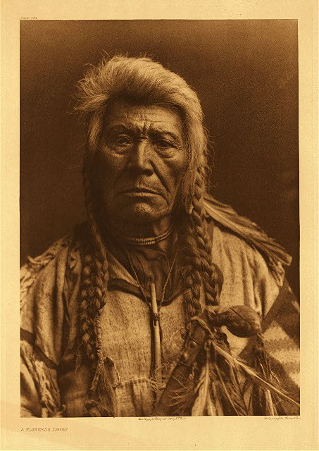 portfolio 7 plate no. 229 Flathead chief