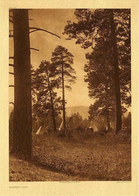 portfolio 7 plate no. 231 Flathead camp