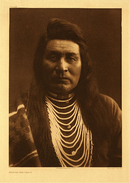 portfolio 8 plate no. 258 Typical Nez Perce