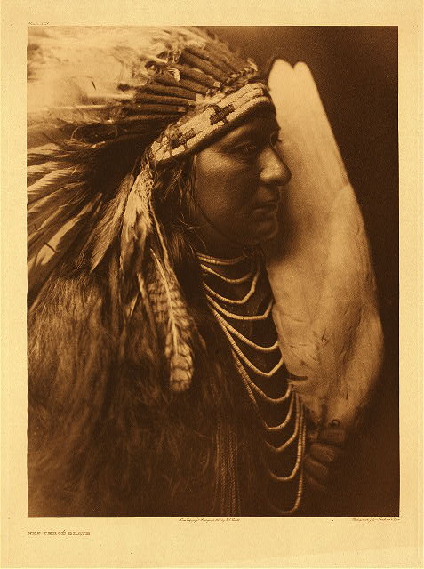 portfolio 8 plate no. 263 Nez Perce brave