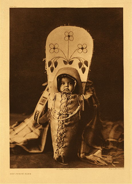 portfolio 8 plate no. 266 Nez Perce babe