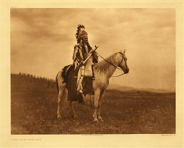 portfolio 8 plate no. 271 War chief - Nez Perce