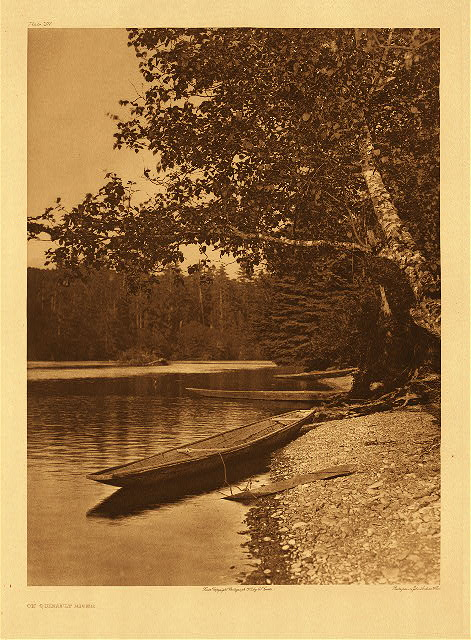 portfolio 9 plate no. 297 On Quinault River