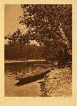 portfolio 9 plate no. 297 On Quinault River - photogravure plate