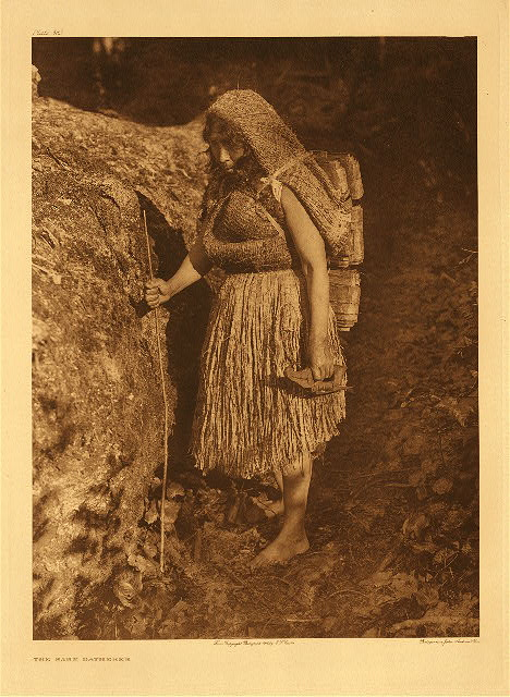 portfolio 11 plate no.383  Bark gatherer