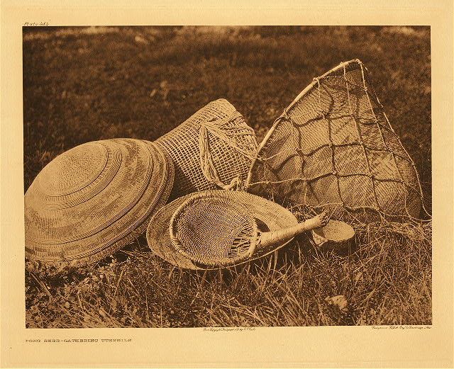 portfolio 14 plate no. 484 Pomo seed-gathering utensils
