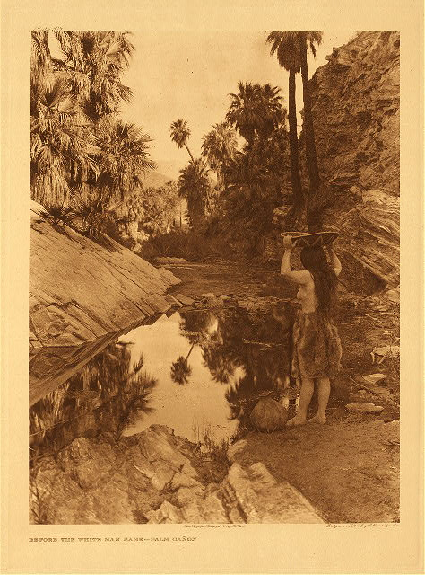 portfolio 15 plate no. 508 Before the white man came - Palm Cañon