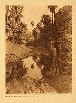 portfolio 15 plate no. 508 Before the white man came - Palm Cañon - photogravure plate