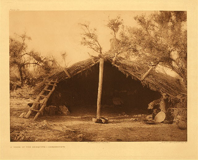 portfolio 15 plate no. 516 Home in the Mesquite – Chemehuevi