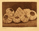 portfolio 15 plate no. 541 Washo baskets - photogravure plate