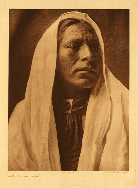 "portfolio 16 plate no. 545 Iahla (""Willow"") – Taos"
