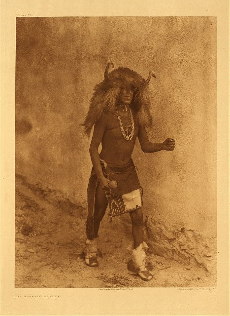 portfolio 16 plate no. 560 Sia buffalo mask