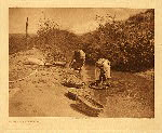 portfolio 17 plate no. 594 Washing wheat - San Juan - photogravure plate