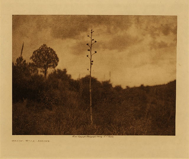volume 1  facing: page  12 Mescal hills - Apache