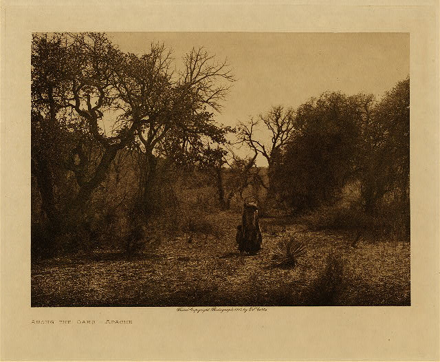 volume 1  facing: page  26 Among the oaks - Apache
