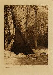 volume 3 facing: page  88 After the snow - photogravure plate