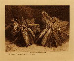 volume 5 facing: page  26 The turtles, with feather adornment - Mandan - photogravure plate
