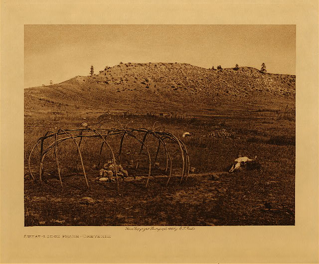 volume 6  facing: page  118 Sweat-lodge frame - Cheyenne