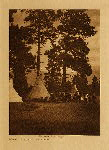 volume 7 facing: page  66 A dance in the forest - Flathead - photogravure plate