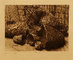 volume 7 facing: page  160 Klickitat basketry - photogravure plate