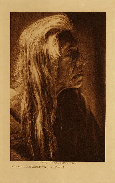 volume 8  facing: page  14 Grizzly-Bear Ferocious - Nez Perce