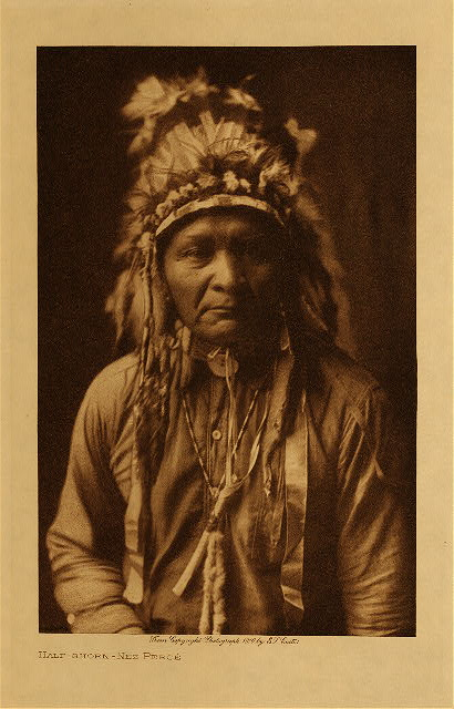 volume 8  facing: page  16 Half-Shorn - Nez Perce