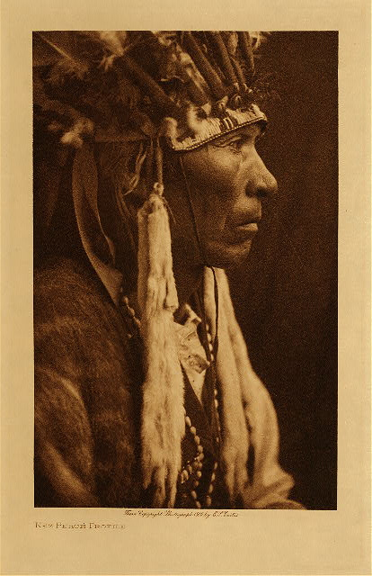volume 8  facing: page  20 Nez Perce profile