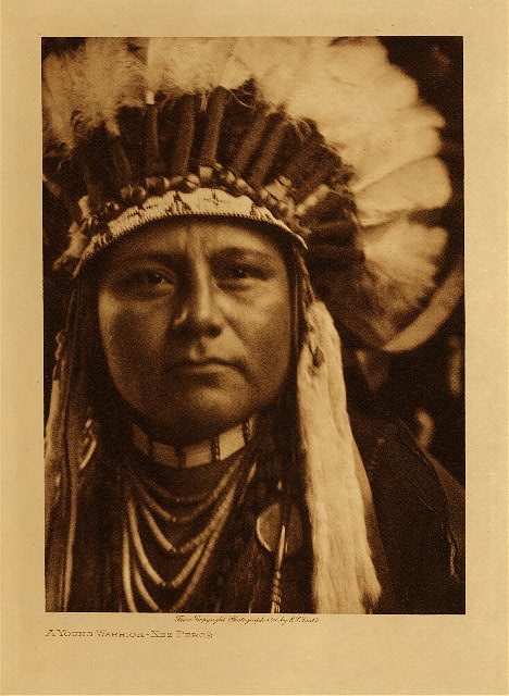 volume 8  facing: page  30 A young warrior - Nez Perce