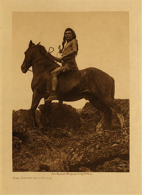 volume 8  facing: page  44 The scout - Nez Perce