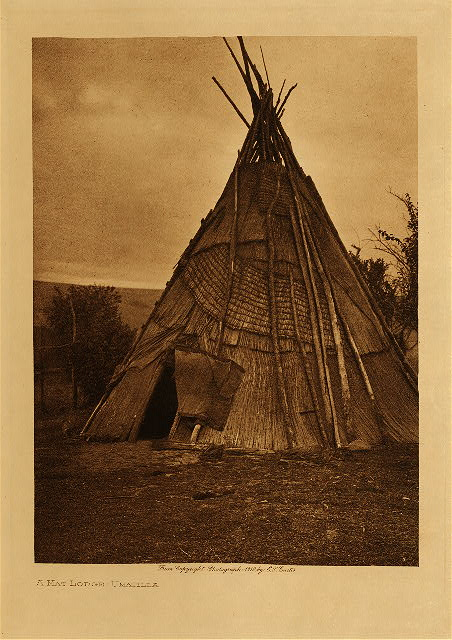 volume 8  facing: page  50 A mat lodge - Umatilla
