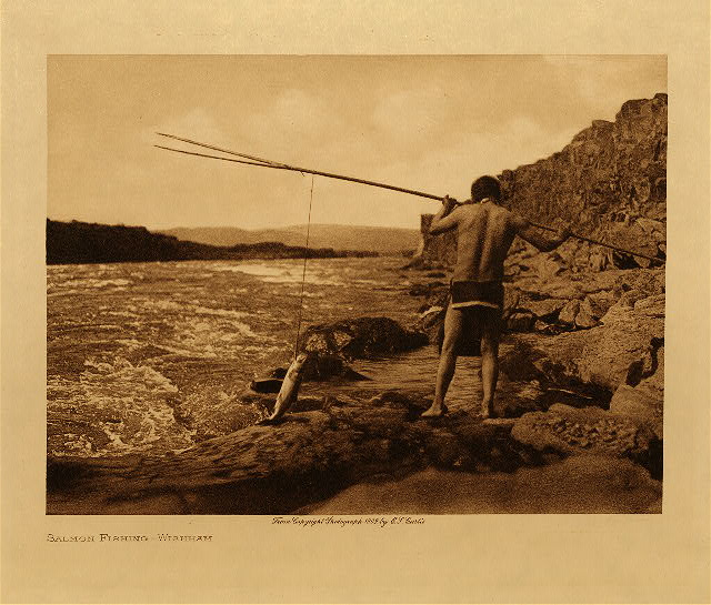 volume 8  facing: page  100 Salmon fishing - Wishham