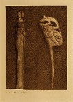 volume 8 facing: page  104 Bone carving - Cascade - photogravure plate