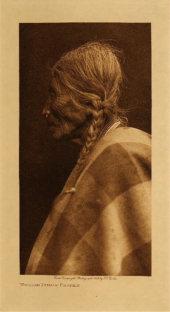 volume 8  facing: page  108 Wishham female profile