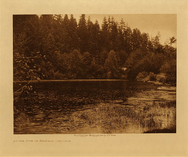 volume 8  facing: page  142 At the site of the Wahla - Cascade