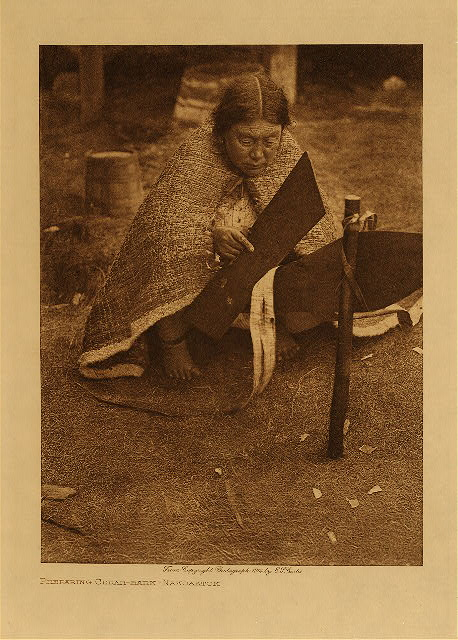 volume 10  facing: page  16 Preparing cedar-bark - Nakoaktok