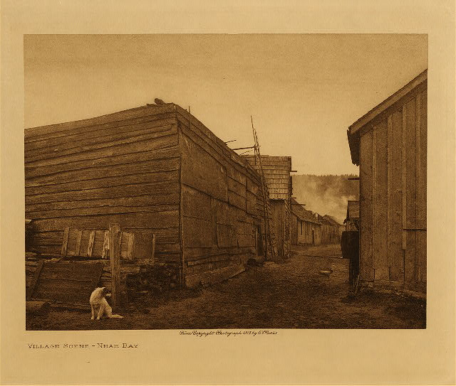 volume 11  facing: page  14 Village scene : Neah Bay