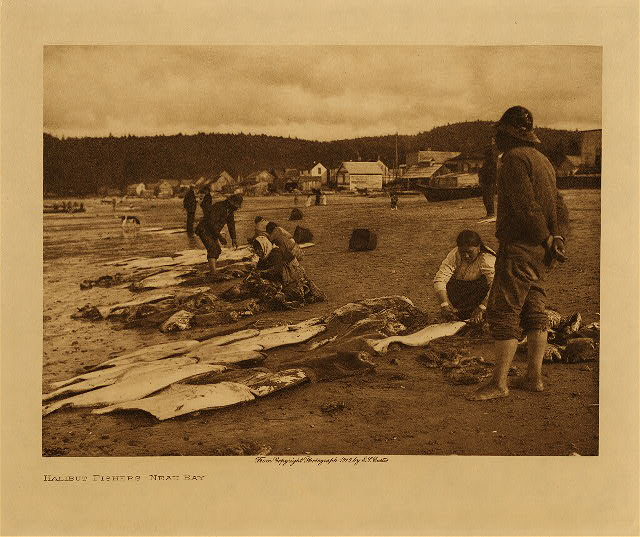volume 11  facing: page  76 Halibut fishers : Neah Bay