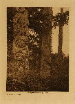 volume 11 facing: page  122 Totems at Kung - photogravure plate