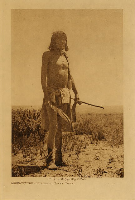 volume 12  facing: page  128 Sikaletstiwa, Shipaulovi snake chief
