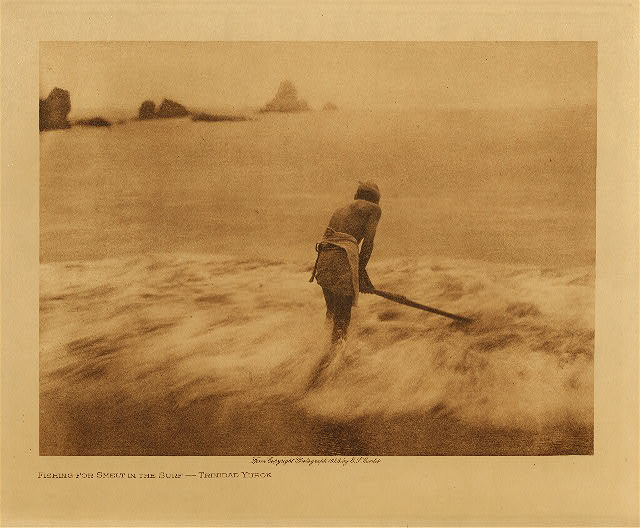 volume 13  facing: page  80 Fishing for smelt in the surf - Trinidad Yurok