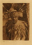 volume 14 facing: page  70 Pomo dance costume - photogravure plate
