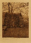 volume 15 facing: page  64 Mono summer shelter - photogravure plate