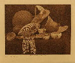 volume 15 facing: page  74 Paviotso basketry - photogravure plate